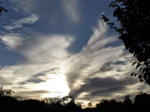 Mare's tail clouds