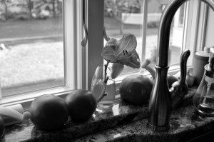 Lily and Tomatoes BW