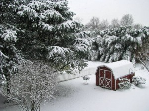 Shed in snow 02 cropped